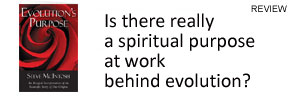 Is there a spiritual purpose behind evolution? Review of Steve McIntosh Evolution's Purpose by Frank Visser