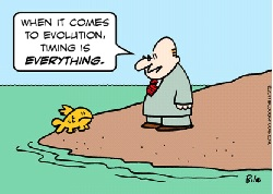 When it comes to evolution, timing is everything