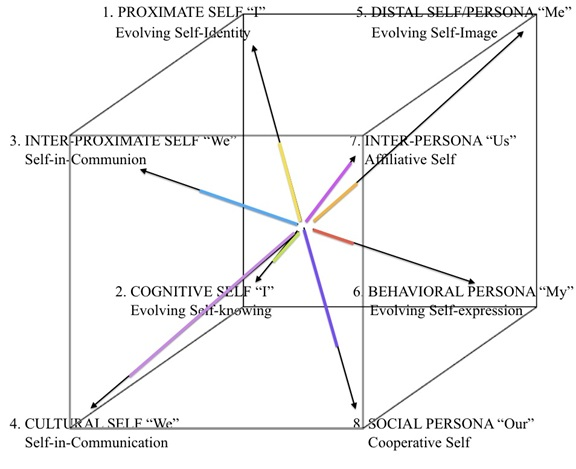 Figure 3. The First Person AQAL Cube Psychograph