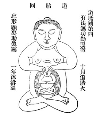 The Chinese Embryo of Enlightenment