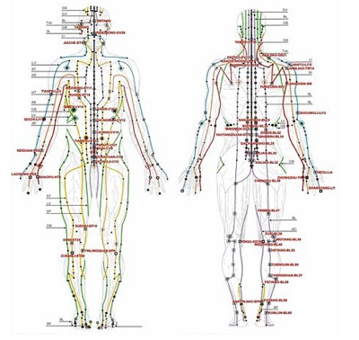 Qi Gong Meridians in the Body