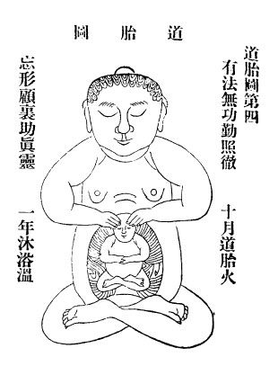 Development of the golden embryo in the lower dantian  (lower torso) of the Taoist cultivator
