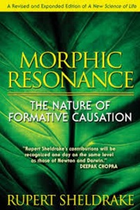 Morpic Resonance