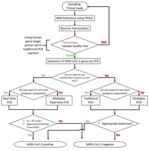 Selection flowchart for SARS-CoV-2 detection protocols.