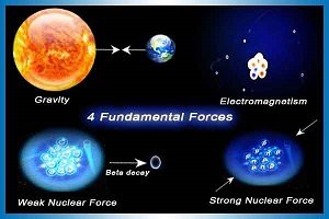 The forces of nature essay